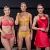 Arnotts Lingerie & Swimwear for 2016