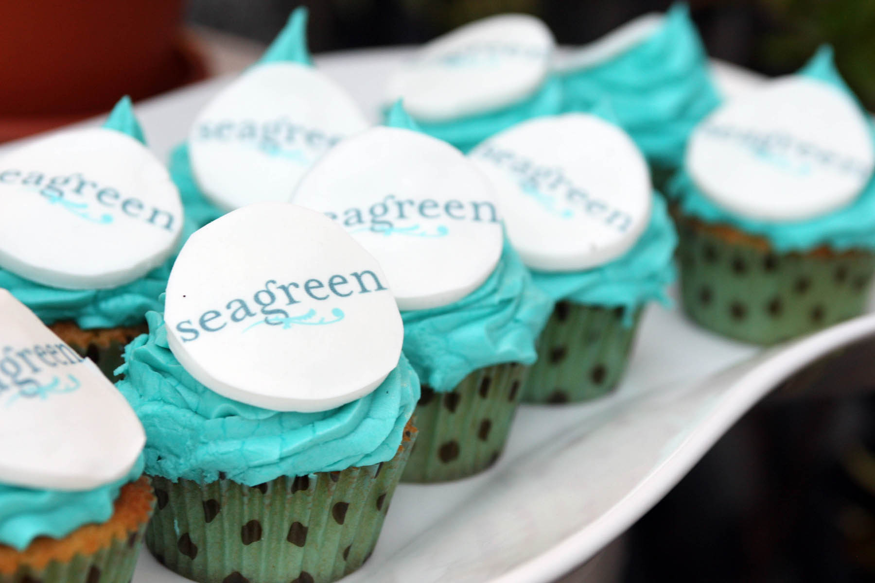 Party People: Seagreen Relaunch